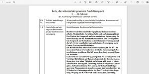 Berichtsheft MFA Medizinische Fachangestellte ehemals Arzthelferin PDF-Format