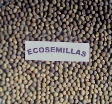 Okra ROJA, quimbombo, gombo, CURATIVA, 85 semillas ECOLÓGICAS, COMPRA 2 ENVÍO 3