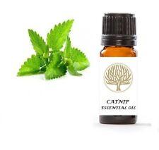 Ekoface Aromathérapie Premium 100% Natural Catnip 10 ml huile essentielle