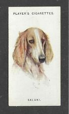 1929 Uk Arthur Wardle Dog Art Head Study Player Cigarette Card Particolor Saluki