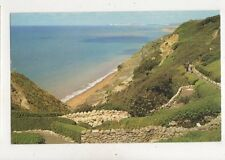 Blackgang Chine IOW 1965 Postcard 925a
