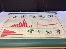 "Vintage NYSTROM Immigration & Naturalization 49.5"" x 36"" Pull Down Chart 04104A"