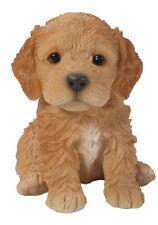 Vivid Arts - PET PALS PUPPY DOG & KENNEL BOX - Brown Cockapoo
