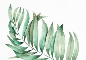 Malen nach Zahlen Pflanzen 40x30 cm