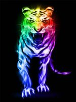 ART PRINT POSTER PAINTING DRAWING MULTICOLOURED NEON TIGER ROAR LFMP0870