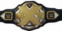 NXT Heavyweight Wrestling Championship Belt