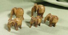 SUITE de 5 PETITS ELEPHANTS en OS de BUFFLE teinté, sculpté à la main-
