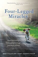 Four-Legged Miracles: Heartwarming Tales of Lost Dogs' Journeys Home