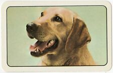 Playing Cards 1 Single Swap Card - Vintage LABRADOR Dog Portrait