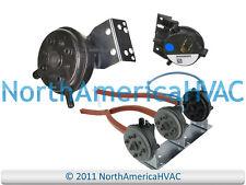 OEM Rheem Ruud Water Heater Pressure Switch AP16520