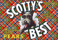*Original* Scotty'S Best Dog Scottish Terrier Pear Crate Label Not A Copy!