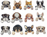 Various Dog Cute Puppy Iron On Patches sew on transfer Pug Corgi Bulldog Terrior