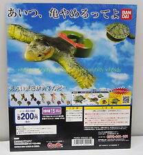 Miniatures Toys Turtles Eject Figure Complete 6pcs - Bandai      ==