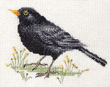 BLACKBIRD ~ Garden Bird ~ Full counted cross stitch kit with all materials