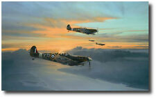 Eagle Force (Eagle Ed) by Robert Taylor - Spitfire - With 10 Pilot Signatures!