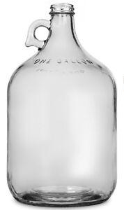 1 Gallon glass Jug (Carboy/Fermenter)