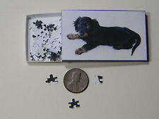 "Mini Jigsaw Puzzle 100 piece 1:12 ""Mini Dachshund Puppy"""