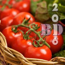 """Tomate """"Antigüa"""" Cereza-vegetal - 300 semillas de alta calidad-paquete original _ 81"""