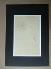 Egon Schiele (1890-1918) - B.-Nr.: 241 - DIN A3