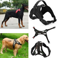 Dog Cat Puppy Nylon Strap Chest Leash Vest Adjustable Collar Rope Pet Supplies