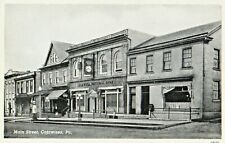 Main Street & National Bank in Catawissa PA OLD