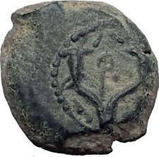 JOHN HYRCANUS I 134BC Jewish Jerusalem Ancient Biblical Widow's Mite Coin i64182
