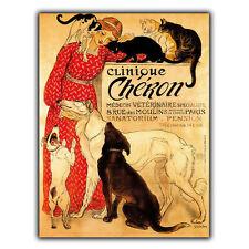 METAL SIGN/PLAQUE Clinique Cheron French Veterinary Vet Vintage poster art print