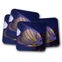 4 Set - Blue-ring Angel Fish Coaster - Coral Reef Tropical Sea Ocean Gift #16055