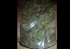 Sidr/ Sedr, Jujube tree leaves , Ziziphus spina, Ruqyah , Roqya, 2 oz