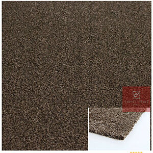 CLEARANCE Cheap Carpets Brown 10mm Thick Action Back Living-Room Quality Carpet