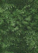 Vinyltapete Bambus Wald Dschungel grün 95936-1 2,47€//1qm