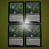 Nightshade Schemers x4 Morningtide 4x Playset Magic the Gathering MTG