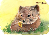 ACEO Limited Edition -Pika,Animal art print, Gift for animal lovers, Cute animal