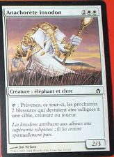 ANACHORETE LOXODON - CREATURE ELEPHANT ET CLERC - VF - CARTE MTG MAGIC