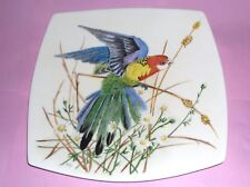 ideal gift Antique Stunning Porcelain hand painted bird plate sign by E. R. C.