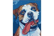 PAINTING BY NUMBERS BOXER T16130079