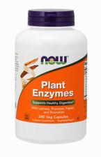 Now Foods, Plant Enzymes mit Laktase, 240 Vegane Kapseln - Blitzversand