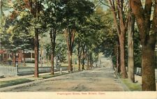 A View Of A Tree-Shaded Washington Street, New Britain, Connecticut CT