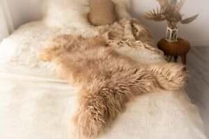 Champagne Pink Sheepskin | Sheepskin Rug  | Sheepskin | Nursery decor