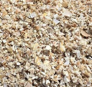 CRUSHED SEA SHELLS MULCH SOIL IMPROVER WEED PEST CONTROL TERRARIUM 1kg-34kg