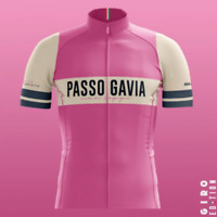 2019 Suarez Men's Giro Passo Gavia Short Sleeve Cycling Jersey