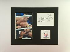 Limited Edition JOHN CENA AND THE ROCK WRESTLING Signed Mount Display WWE