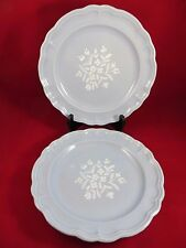 """Pfaltzgraff Gazebo Bouquet Dinner Plates 10 1/2""""  Set of  2  Made in the USA"""