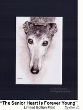 Greyhound The Senior Heart Is Forever Young Signed Art Kevin Z Arttogo