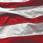 Patriotic Symbol Flag 16 Beverage Napkins 4th July Stars Stripes