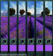 File Art 6x SCHMALE Ordner-Etiketten PROVENCE Ordner RÜCKENSCHILDER Sticker 605