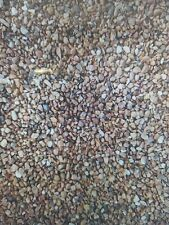 10MM DRIVEWAY GARDEN PEA SHINGLE GRAVEL / PEA GRAVEL - BULK BAG