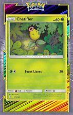 🌈Chétiflor - SL2:Gardiens Ascendants - 1/145 - Carte Pokemon Neuve Française