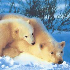 Polar Bears Printed Soft Polar Fleece Throw Rug Blanket | Snow | Soft & Cosy