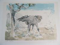 Hansjörg Wagner (1930-2013)-Farblithographie eines Esels  Nr. 22/25 um 1970
